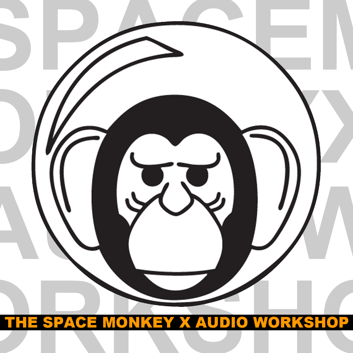 The Space Monkey X Audio Workshop